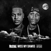Meek Mill – Miss My Dawgs (Feat. Travi$ Scott & Strap)