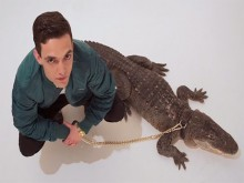 Tangana-alligators