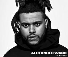 The Weeknd Alexander Wang WANGXO
