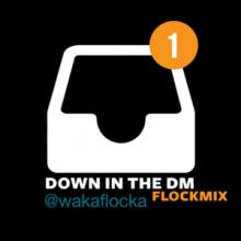 Waka Flocka – Down In The DM  (Flockmix)