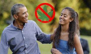 Pillan a la hija de Obama fumando marihuana en Lollapalooza