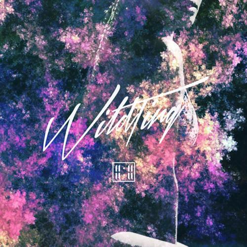 El artista 11:11 vuelve a la carga con el single 'Wild Ting'