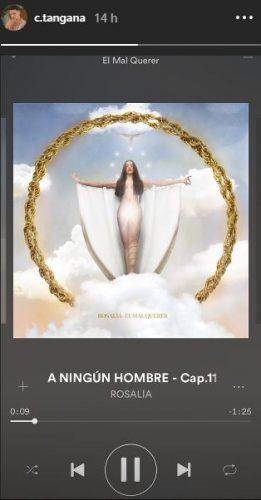 ANINGUNHOMBRE 261x500 - Ya puedes escuchar 'El Mal Querer', el nuevo álbum de Rosalía