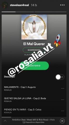 STEVELEAN 278x500 - Ya puedes escuchar 'El Mal Querer', el nuevo álbum de Rosalía