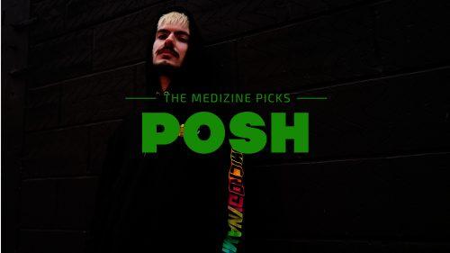 Posh: la versatilidad y la elegancia inglesa hechas artista